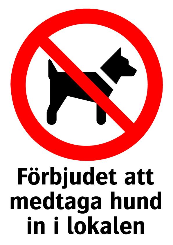 Förbjudet att medtaga hund in i lokalen
